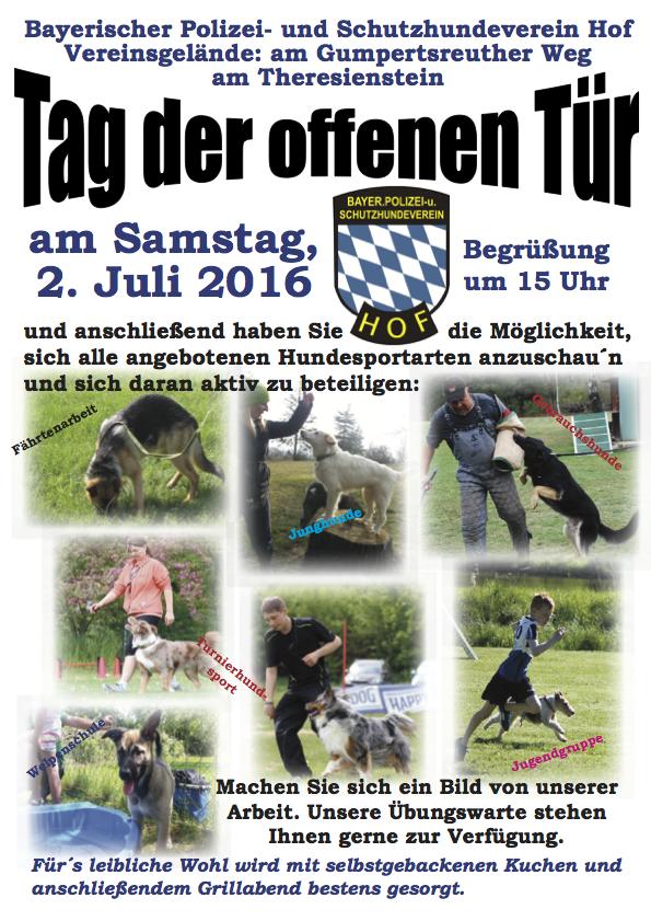 Plakat Waldfest 2016
